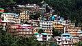 Houses overview at Macleod Ganj.jpg