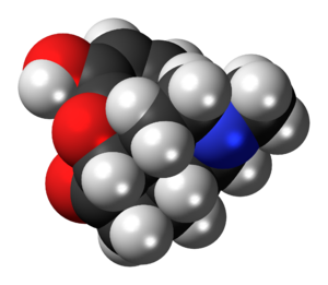 Hydromorphone molecule spacefill.png