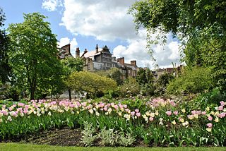 Chelsea Physic Garden botanical garden