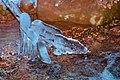 Ice crystals-06 01-24-2009.jpg