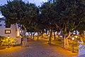 Icod de los Vinos, Santa Cruz de Tenerife, Spain - panoramio (36).jpg