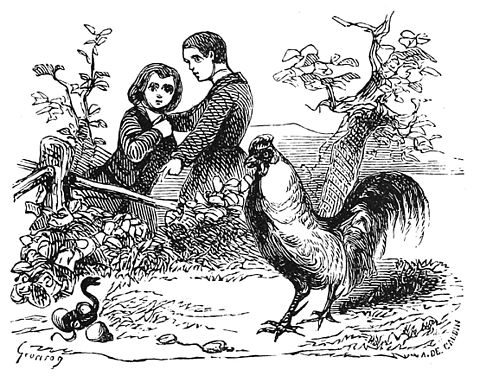 Illustration du Dictionnaire infernal par Louis Le Breton.
