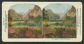 In Yosemite Valley, California, from Robert N. Dennis collection of stereoscopic views.png