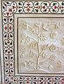 India-6161 - Flickr - archer10 (Dennis).jpg