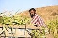 Indian village peoples 34.jpg