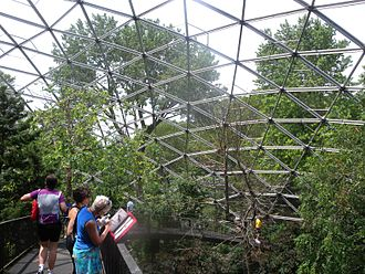 Queens Zoo - Inside the aviary