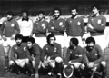 Iran football WC 1978.png