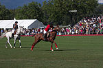 Jaeger-LeCoultre Polo Masters 2013 - 31082013 - Final match Poloyou vs Lynx Energy 43.jpg