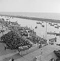 Jaffa. Vissersbootjes verlaten de kleine haven. Op de kade liggen opgerolde kabe, Bestanddeelnr 255-2970.jpg