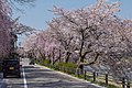 Japan 090416 Kanazawa 04.jpg
