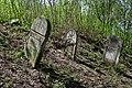 Jewish cemetery Zelechow IMGP3182.jpg