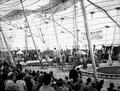 John Robinson's Circus WDL10696.png