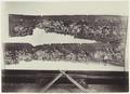 KITLV - 3957 - Kurkdjian, Ohannes - Wayang beber scrolls at Patjitan - circa 1880.tif