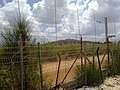Kafr Kila, Lebanon - panoramio (3).jpg