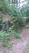 kazemat r008-p duitse pantherstellung ten noorden van de asschatterweg 2012-09-07 12-58-02