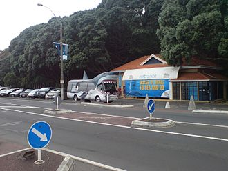Kelly Tarlton's Sea Life Aquarium - The entrance to the mostly hidden facilities, and the promotional shark bus.