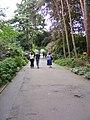 Kelsey Park Path - geograph.org.uk - 1325846.jpg