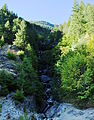 Ketchum Creek Falls 01.jpg
