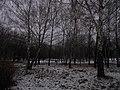 Khimselyshche, Cherkasy, Cherkas'ka oblast, Ukraine - panoramio (273).jpg