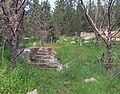 Khirbet el-Masane DSC 003002 0 1a.jpg
