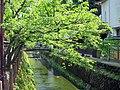 Kinosakicho Yushima, Toyooka, Hyogo Prefecture 669-6101, Japan - panoramio (4).jpg