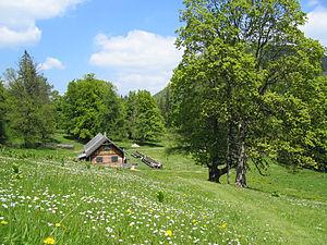 Gutenstein Alps - The Kleinzell Hinteralm on the north side of the Reisalpe