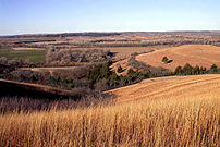 Konza Prairie, in the Flint Hills