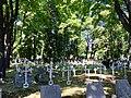 Krakow Military cemetery, Poland, 2015, 17.jpg