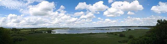 Krankesjön i Lunds kommun är en typiskt eutrof sjö.