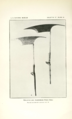 Krieger 1926 Philippine ethnic weapons Plate 10.png