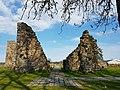 Kronobäcks klosterruin 201605 06.jpg