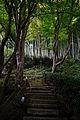 Kyorinbo Omihachiman Shiga pref Japan06s3.jpg