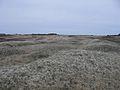 L'Anse aux Meadows-1.jpg
