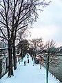 Lîle aux Cygnes 1, Paris 20 janvier 2013.jpg