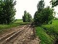 L310, Moldova - panoramio (2).jpg