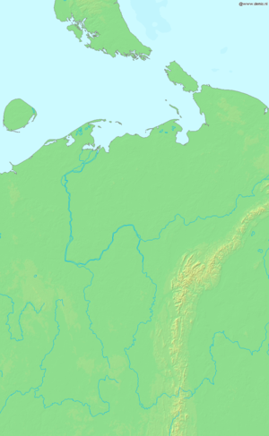 Northwest Russia - Pechora River. The Usa River flows west from the Urals and joins the west-flowing part of the Pechora. The Izhma flows north to meet the Pechora bend. The Tsilma meets the Pechora bend from the west.