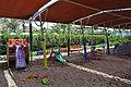 LIMAK ARCADIA 5(2015) - panoramio (3).jpg