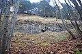 LSG Sudmerberg - Kreide-Sandstein (1).jpg
