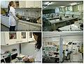 LaboratoriosMicroImunoUFU.jpg