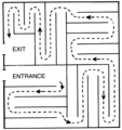 Labyrinth Maze (PSF).png