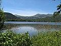 Lac Chambon, les Rives.jpg