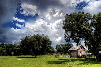 Lacoochee, Florida - Field in Lacoochee
