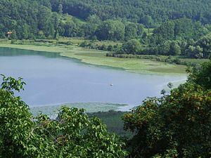 Lago di Alserio - Image: Lago Alserio