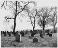 Lancaster County, Pennsylvania. An old Amish cemetery. Note that the stones are plain and small an . . . - NARA - 521130.tif