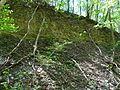Landschaftsschutzgebiet Gestorfer Lößhügel - Steinbruch (1).JPG