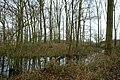 Landschap De Stroopers te Kemzeke - 371816 - onroerenderfgoed.jpg