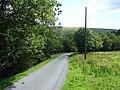 Lane through Cwm Clegyrnant - geograph.org.uk - 520623.jpg