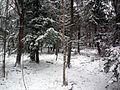 Le parc de la terre des jeunes - Victoriaville - Centre-du-Québec 23.JPG
