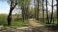 Leninsky District, Moscow Oblast, Russia - panoramio (120).jpg