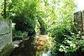 Les jardins de la motte à Raizeux le 17 mai 2015 - 09.jpg